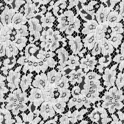 Corded French Lace