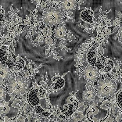 Ivory and/or Champagne Lace