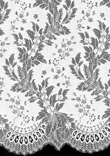 STRETCH CORDED LACE - IVORY