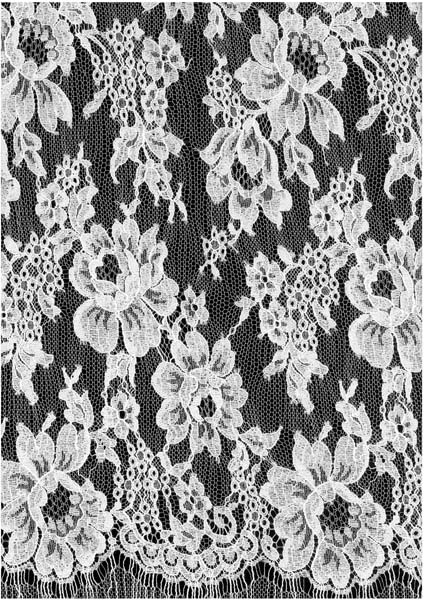 FRENCH CORDED LACE (140cm) - IVORY